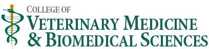 College of Veterinary Medicine & Biomedical Sciences logo